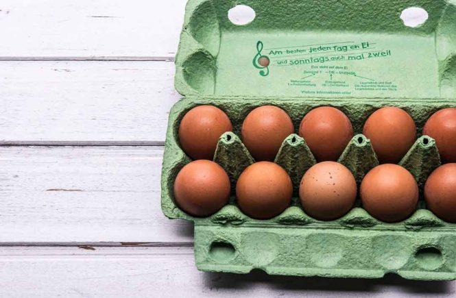 geöffneter Eierkarton mit Eiern
