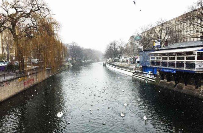 Schwäne und Schneeflocken am Landwehrkanal